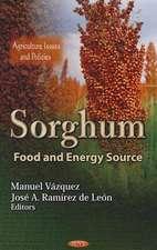 Sorghum: Food & Energy Source