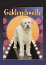 Goldendoodle (Designer Dog Series)