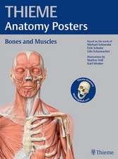 Thieme Anatomy Poster, Latin Nomenclature: Bestseller