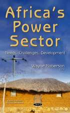 Africas Power Sector: Needs, Challenges, Development