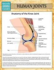 Human Joints (Speedy Study Guide)
