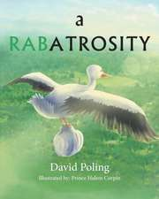A Rabatrosity