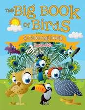 The Big Book of Birds (A Coloring Book)