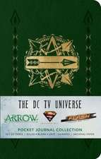 The DC TV Universe