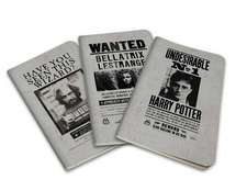 Harry Potter Wanted Posters Pocket Journal Collection