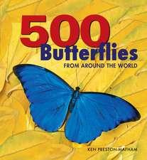 500 Butterflies:  Butterflies from Around the World