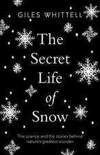 Secret Life of Snow