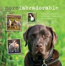 Morelabradorable: Follow the adventures of Barnaby the labrador and his friends