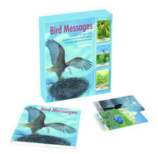 Bird Messages: Includes 52 specially commissioned cards and a 64-page illustrated book