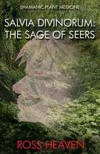 Shamanic Plant Medicine – Salvia Divinorum: The Sage of the Seers
