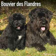 Bouvier Des Flandres Calendar 2018