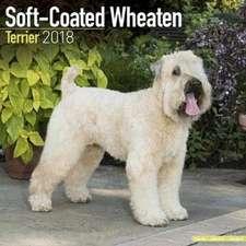 Soft Coated Wheaten Terrier Calendar 2018