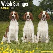 Welsh Springer Spaniel Calendar 2018