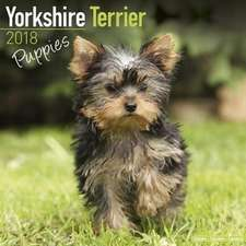 Yorkshire Terrier Puppies Calendar 2018