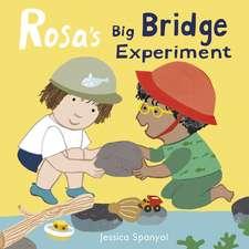 Rosa's Big Bridge Experiment