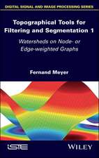 Topographical Tools for Filtering and Segmentation: Watershed and Flooding