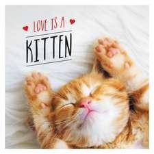 Love Is a Kitten: A Cat-Tastic Celebration of the World's Cutest Kittens