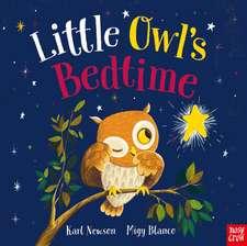 Newson, K: Little Owl's Bedtime