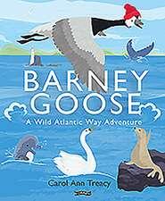 Barney Goose: A Wild Atlantic Way Adventure