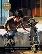 Revenson, J: Harry Potter: The Film Vault - Volume 9: Goblin