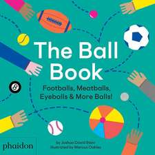The Ball Book: Footballs, Meatballs, Eyeballs & More Balls!