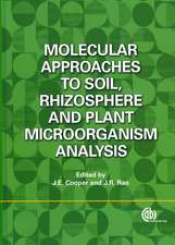 Molecular Approaches to Soil, Rhizosphere and Plant Microorganism Analysis