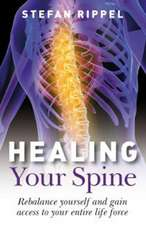 Healing Your Spine – Learn to Live Without Back Pain