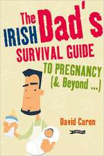 The Irish Dad's Survival Guide to Pregnancy (& Beyond...):  Pagan Ireland Myth - Landscape - Tradition