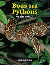 Boas and Pythons of the World