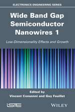 Wide Band Gap Semiconductor Nanowires 1: Low–Dimensionality Effects and Growth