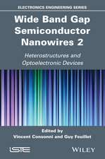 Wide Band Gap Semiconductor Nanowires 2: Heterostructures and Optoelectronic Devices
