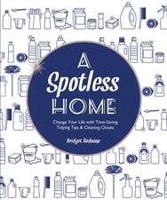 A Spotless Home