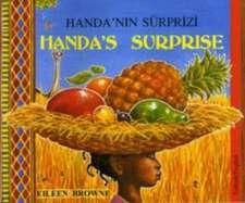 Handa's Surprise in Turkish and English