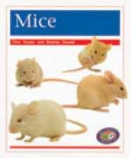 Mice PM Non Fiction Amimal Facts Level 16 Pets Orange