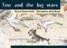 Tiny and the Big Wave PM Yellow Set 3 Fiction Level 8