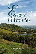 Essays in Wonder