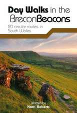 Day Walks in the Brecon Beacons
