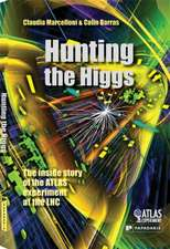 Hunting the Higgs