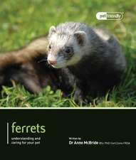 Ferrets:  Understanding and Caring for Your Pet