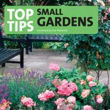 Petherick, T: Top Tips for the Small Garden