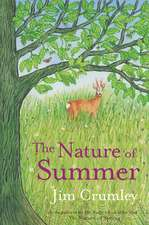 Nature of Summer