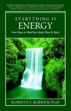 Everything Is Energy:  New Ways to Heal Your Body, Mind and Spirit
