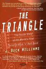 The Triangle:  The True Inside Story of the World's First Terrorist Rock and Roll Band