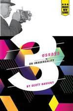 3 Essays on Imagereality