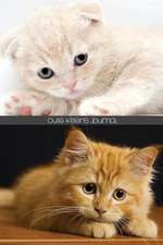 Cute Kittens Journal