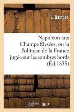 Napoleon Aux Champs-Elysees, Ou La Politique de La France Jugee Sur Les Sombres Bords