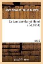 La Jeunesse Du Roi Henri. Tome 3