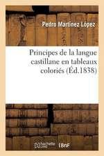 Principes de La Langue Castillane En Tableaux Colories