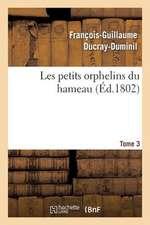 Les Petits Orphelins Du Hameau.Tome 3, Edition 2