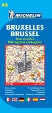 Bruxelles 1 : 17 500